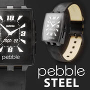 PEBBLE steel leather band 3d model