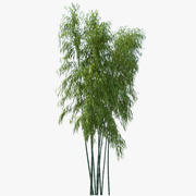 Bambu 3d model