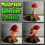 Mushroom Collection 3 Mushrooms 3d model