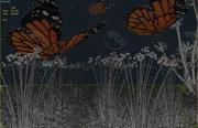 La farfalla 3d model