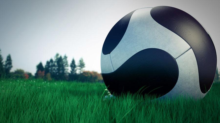 Soccer Balls royalty-free 3d model - Preview no. 2