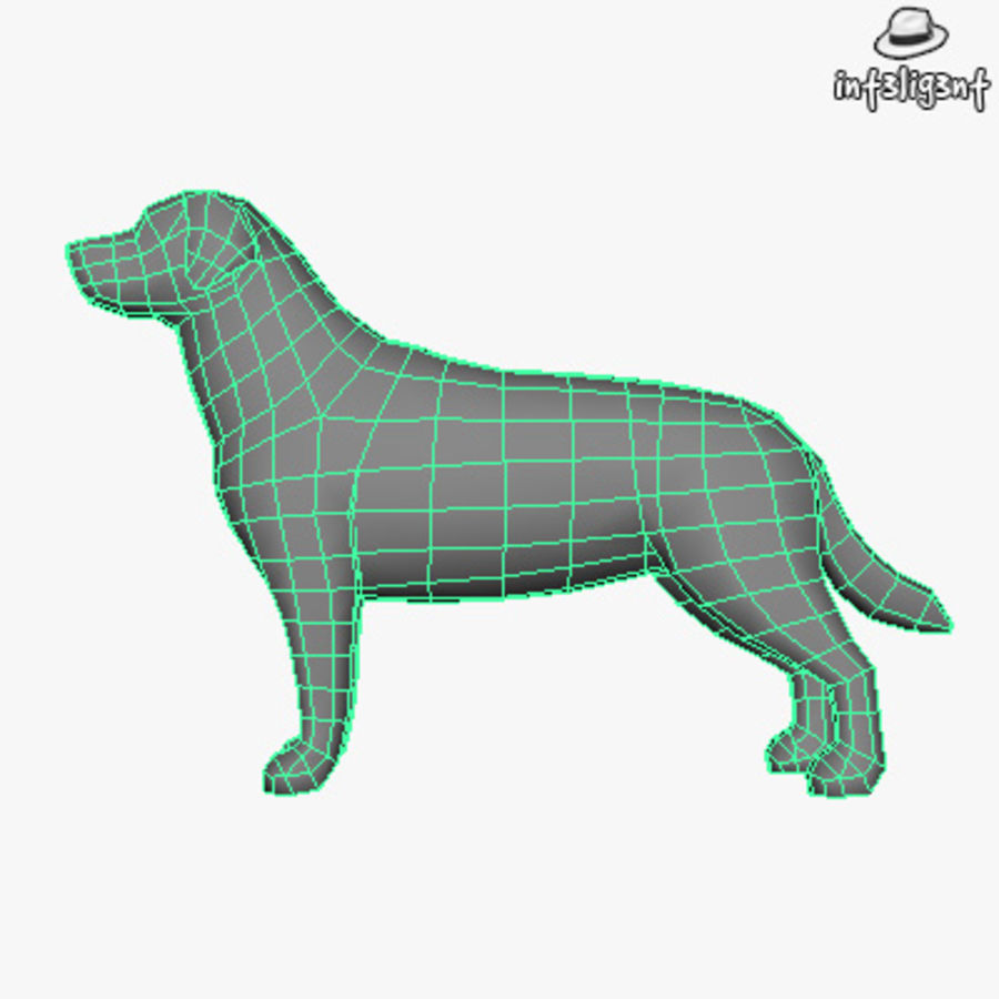 Low Poly Labrador Retriever royalty-free 3d model - Preview no. 5