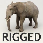 Elefante aparejado de Lowpoly modelo 3d