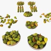 Birnenfrucht-Sammlungssatz 3d model