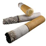 cigarette end 3d model