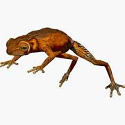 Light Brown Tree Frog 3d model