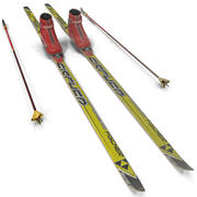 Skis 2 3d model
