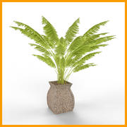 plant 01 3d model