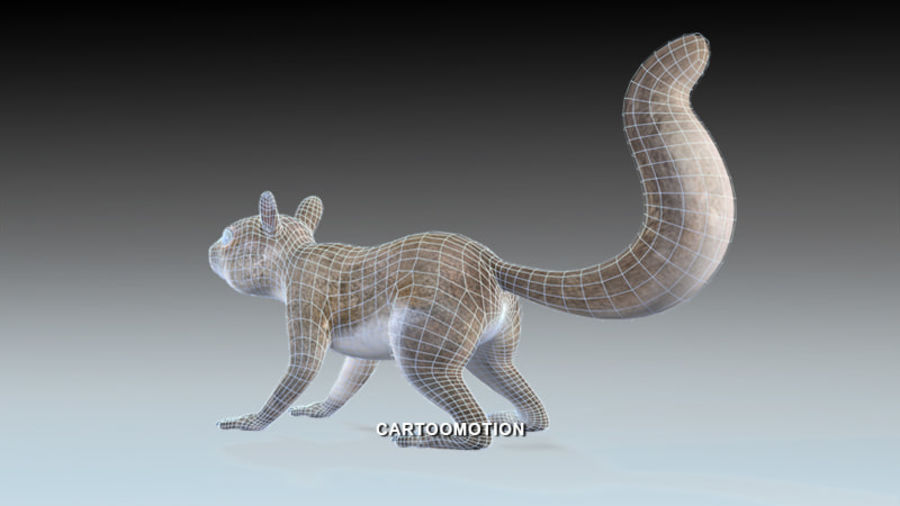 Fox Squirrel royalty-free 3d model - Preview no. 6