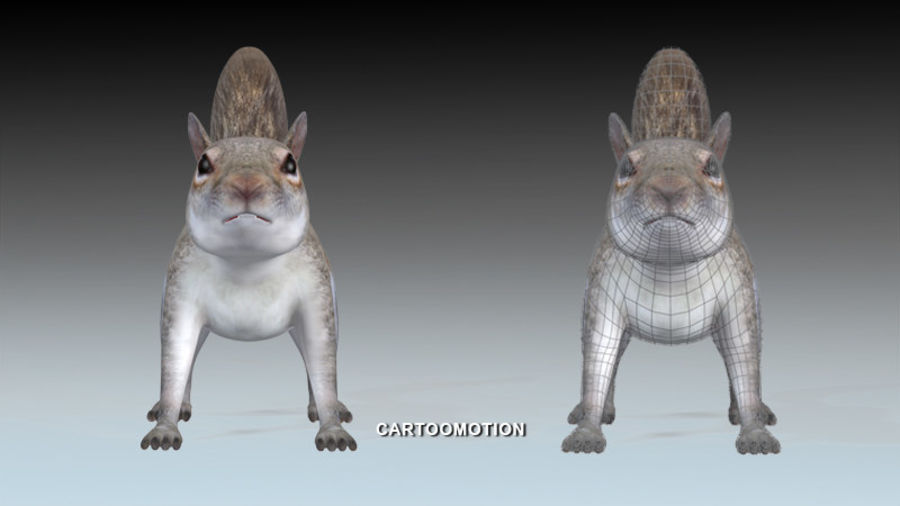 Fox Squirrel royalty-free 3d model - Preview no. 8