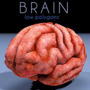 brain low poly 3d model