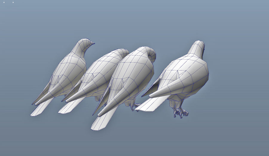Pigeons royalty-free 3d model - Preview no. 10