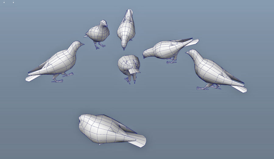 Pigeons royalty-free 3d model - Preview no. 13