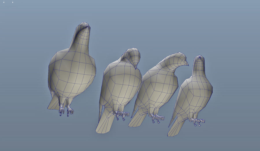 Pigeons royalty-free 3d model - Preview no. 11