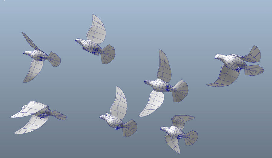 Pigeons royalty-free 3d model - Preview no. 14