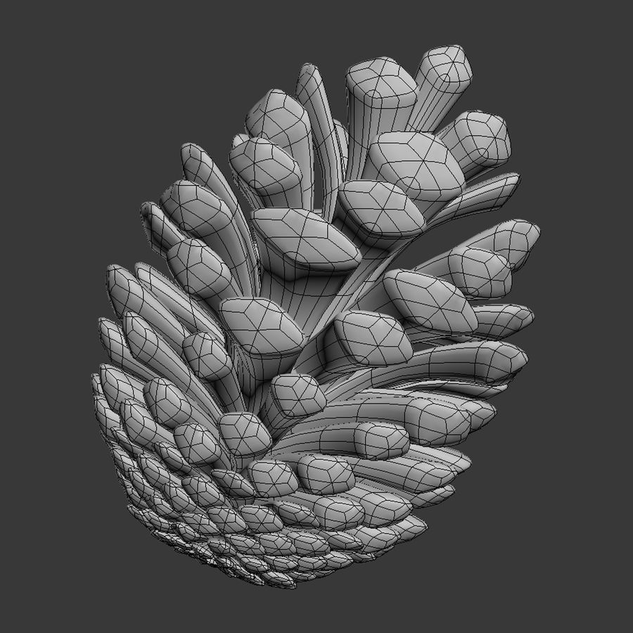 Fir Cone royalty-free 3d model - Preview no. 10