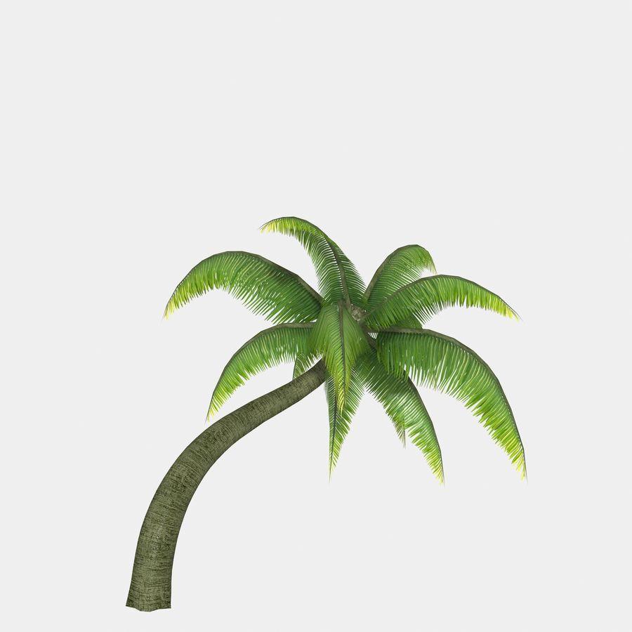 Palm MC-01 royalty-free 3d model - Preview no. 12