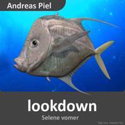 Lookdown fish 3d model