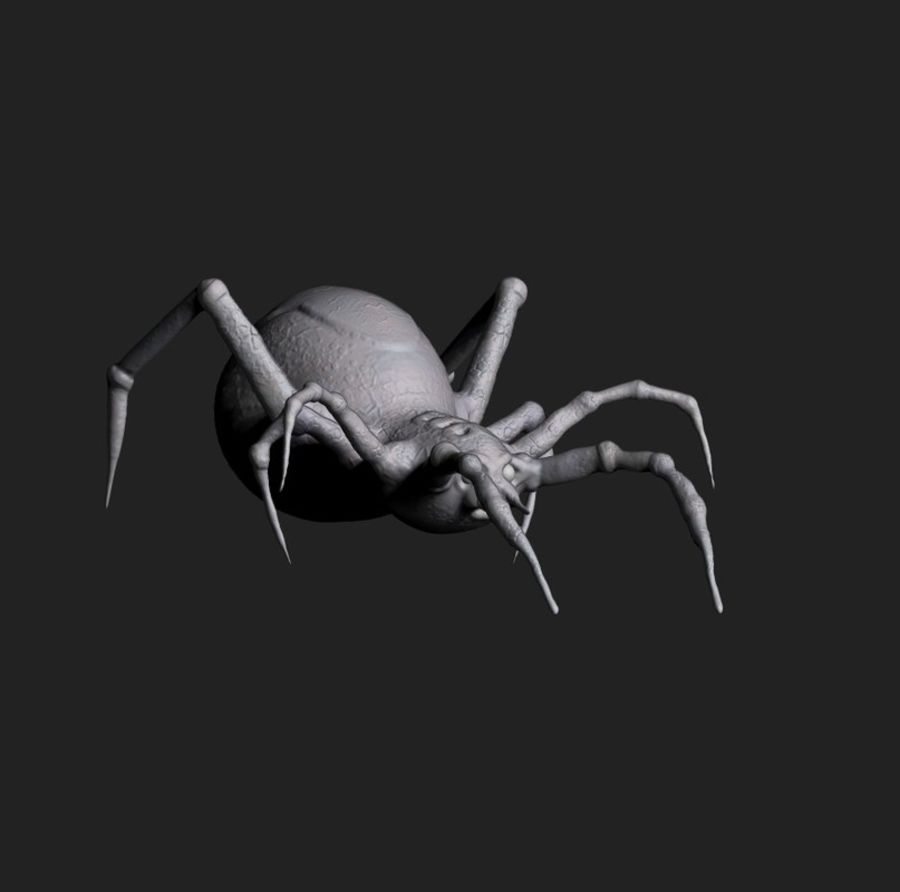 aranha royalty-free 3d model - Preview no. 2