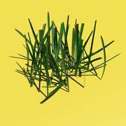 Grass 02 3d model