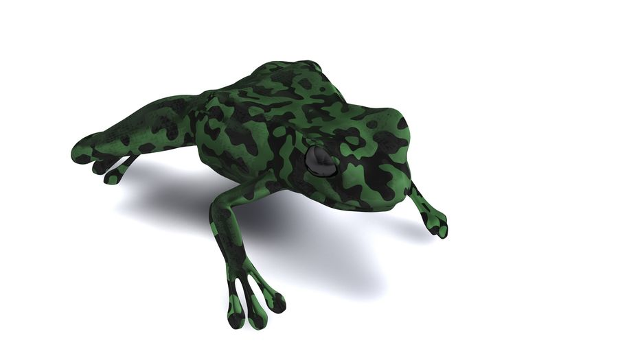 Frog camo rigged royalty-free 3d model - Preview no. 2