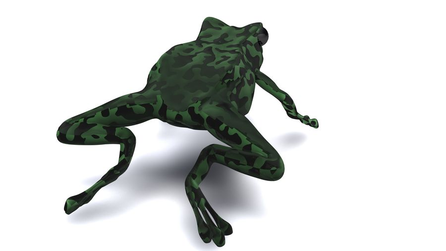 Frog camo rigged royalty-free 3d model - Preview no. 3