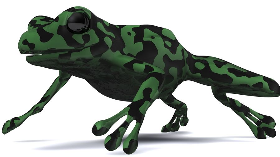 Frog camo rigged royalty-free 3d model - Preview no. 4