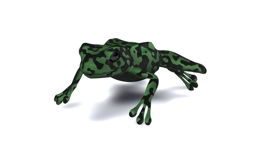 Frog camo rigged royalty-free 3d model - Preview no. 1