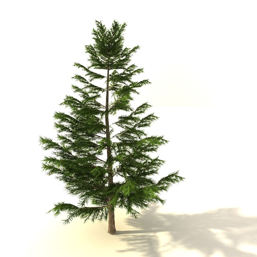 树森林 royalty-free 3d model - Preview no. 6
