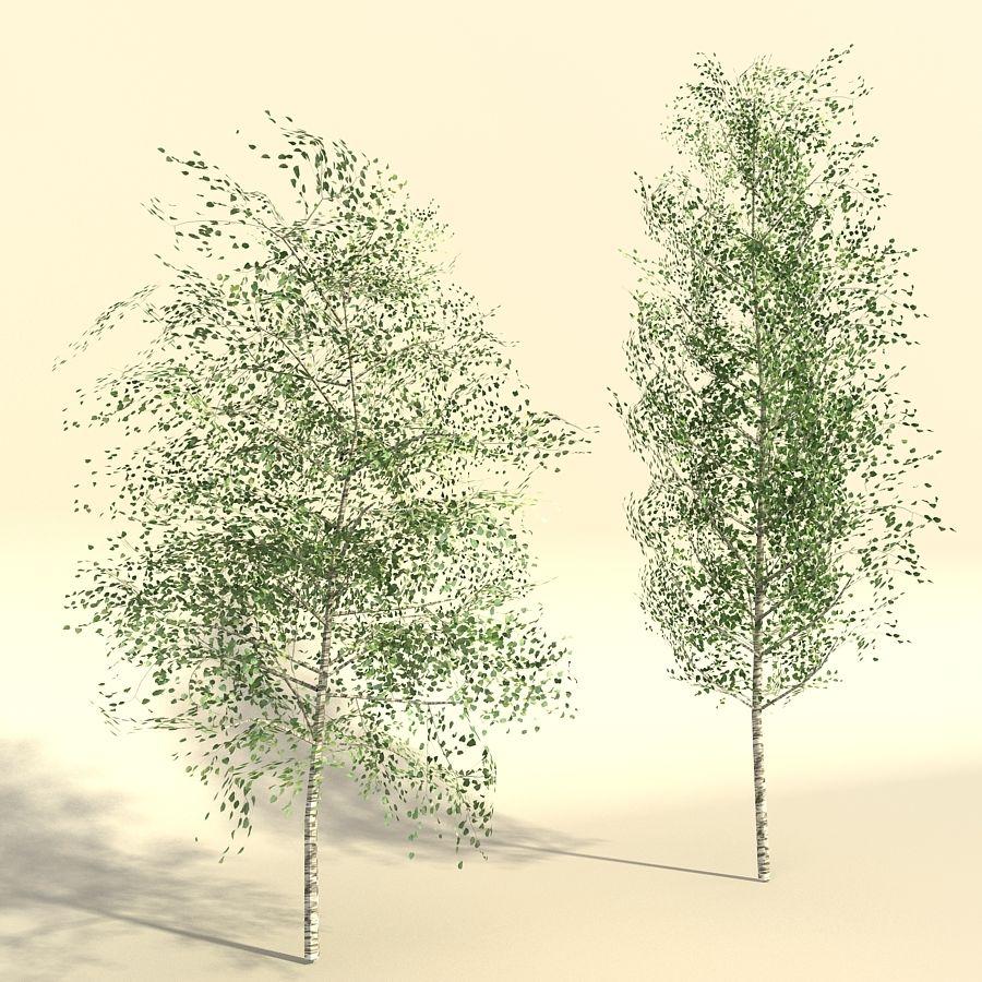 树森林 royalty-free 3d model - Preview no. 5