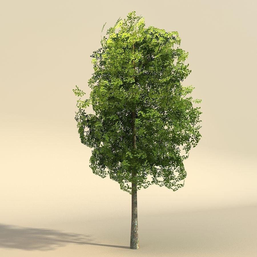 树森林 royalty-free 3d model - Preview no. 4