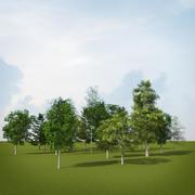 树森林 3d model