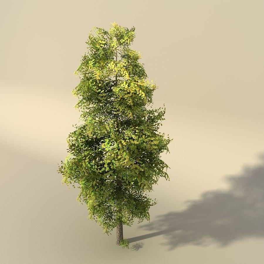 树森林 royalty-free 3d model - Preview no. 1