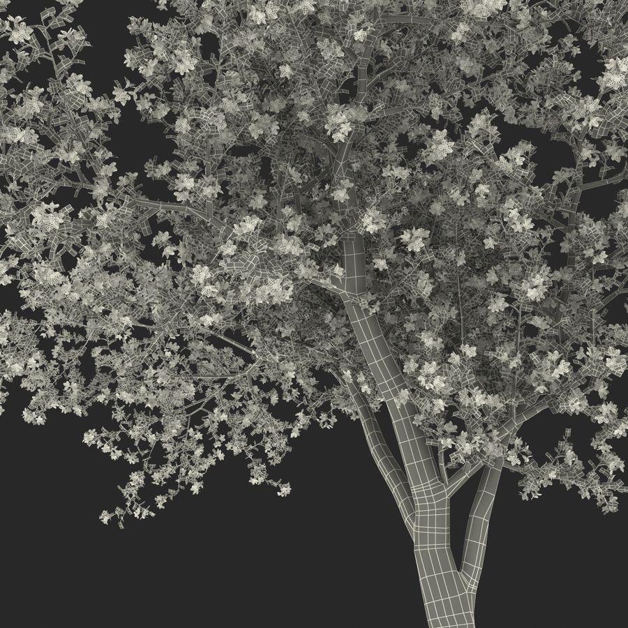 꽃 사과 나무 royalty-free 3d model - Preview no. 44