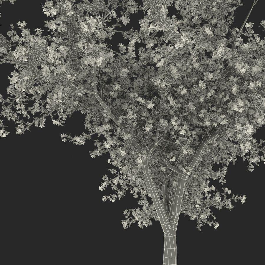 꽃 사과 나무 royalty-free 3d model - Preview no. 42