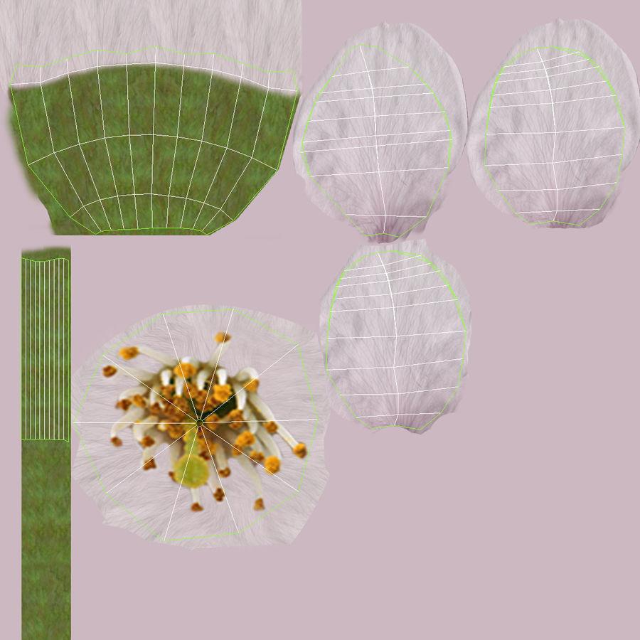 꽃 사과 나무 royalty-free 3d model - Preview no. 2