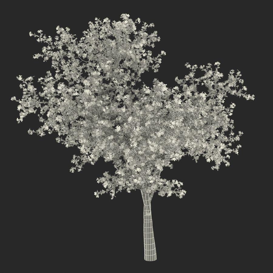 꽃 사과 나무 royalty-free 3d model - Preview no. 35