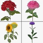 花のコレクション4 3d model