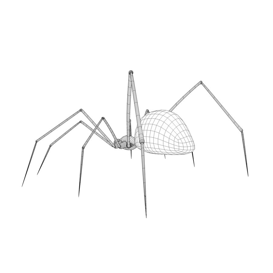 Spider royalty-free 3d model - Preview no. 2