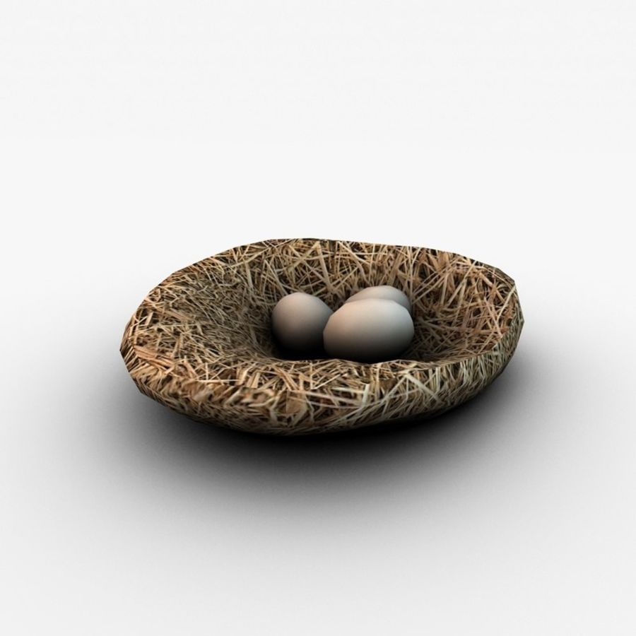 Nest with eggs royalty-free 3d model - Preview no. 1