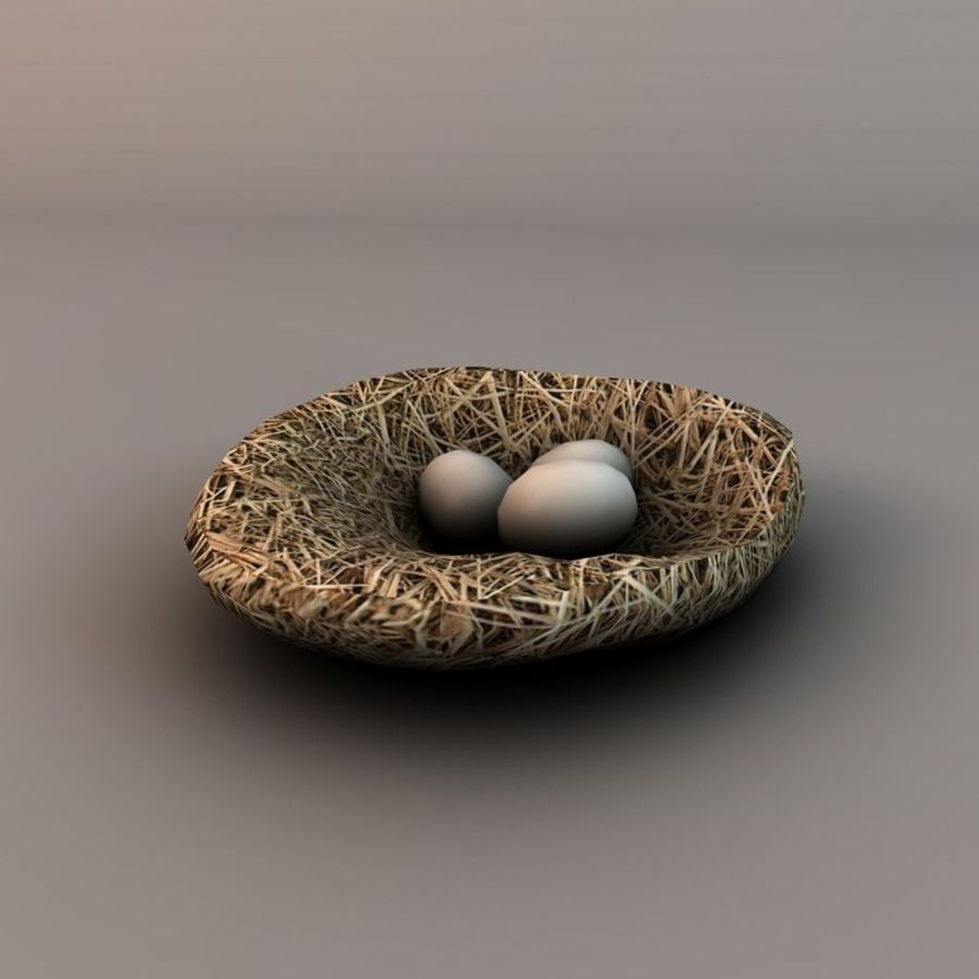 Nest with eggs royalty-free 3d model - Preview no. 2