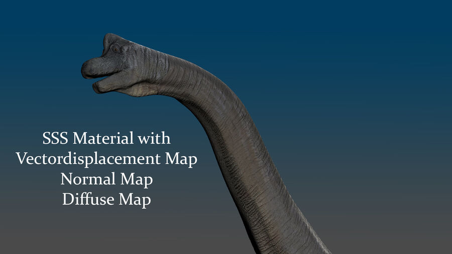 Brachiosaurus royalty-free 3d model - Preview no. 4