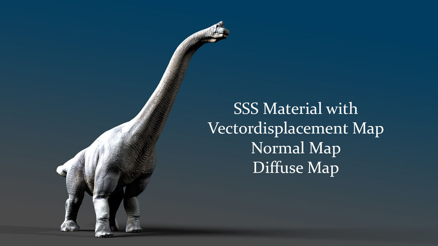 Brachiosaurus royalty-free 3d model - Preview no. 1