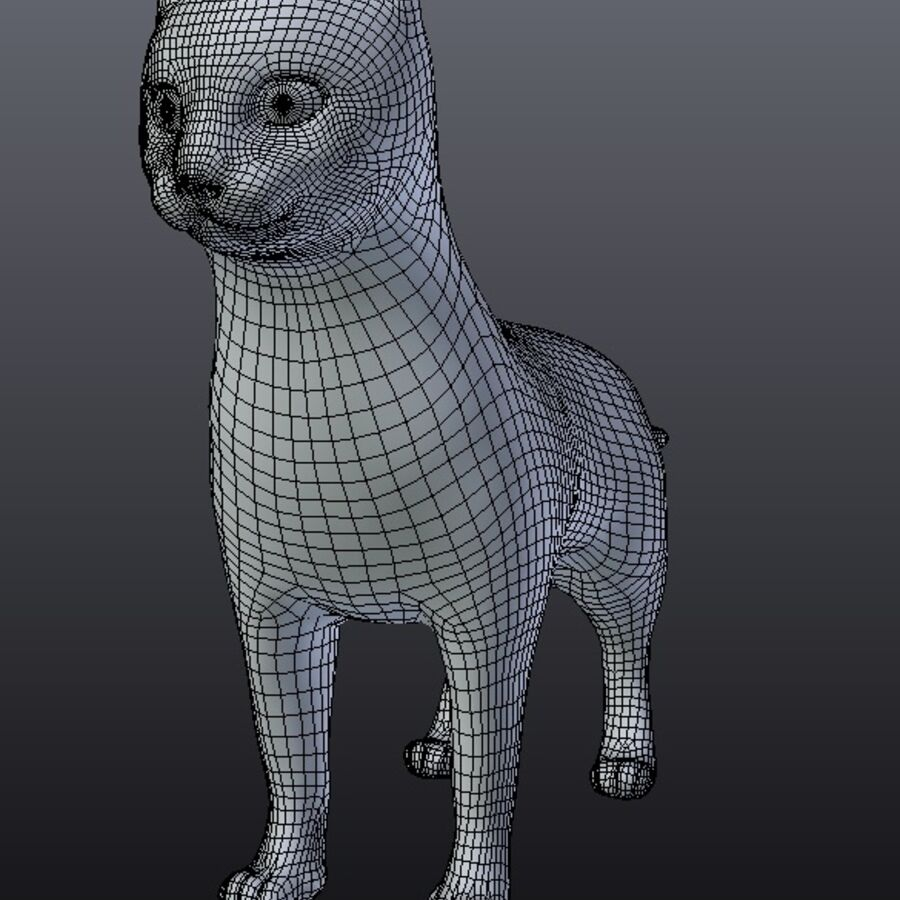 Kot amerykański krótkowłosy royalty-free 3d model - Preview no. 10