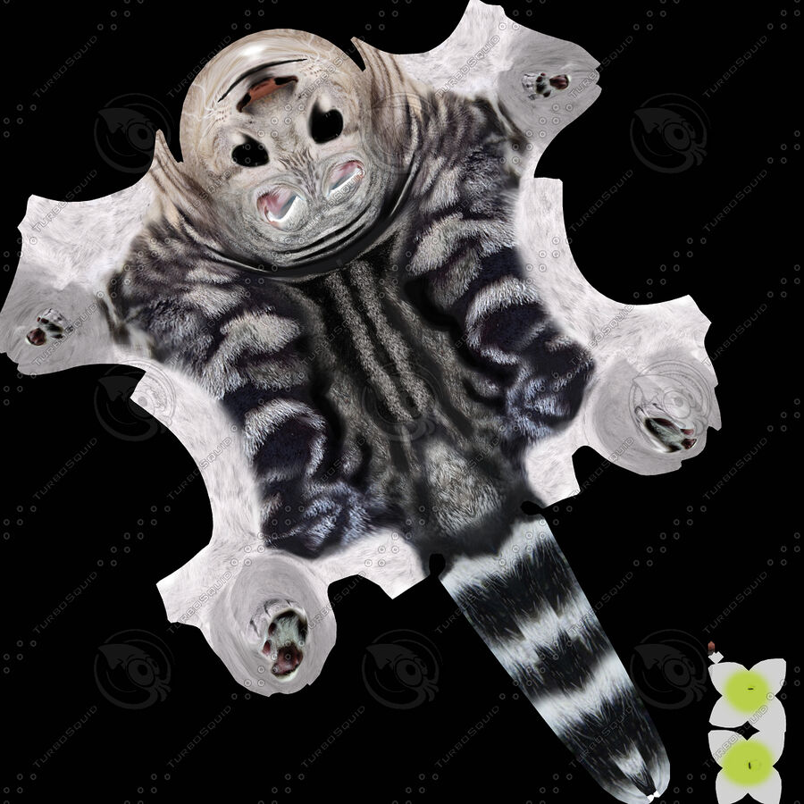 American Shorthair Cat royalty-free 3d model - Preview no. 12