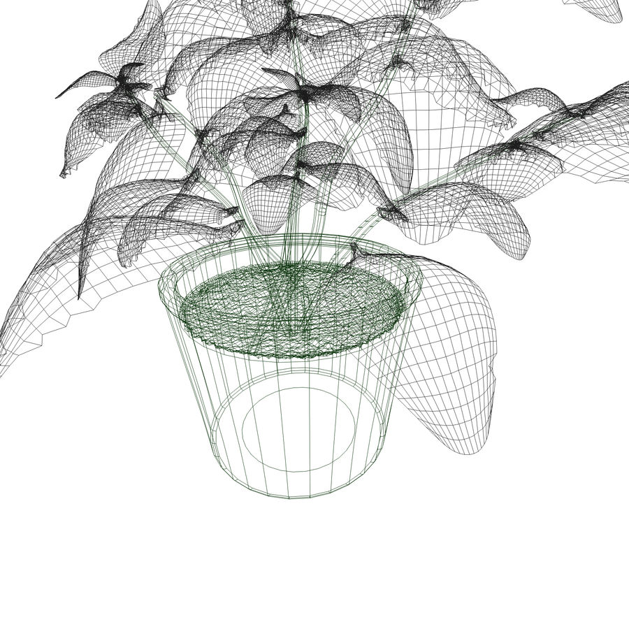 Plant in a pot royalty-free 3d model - Preview no. 5