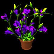 orcid flower 3d model