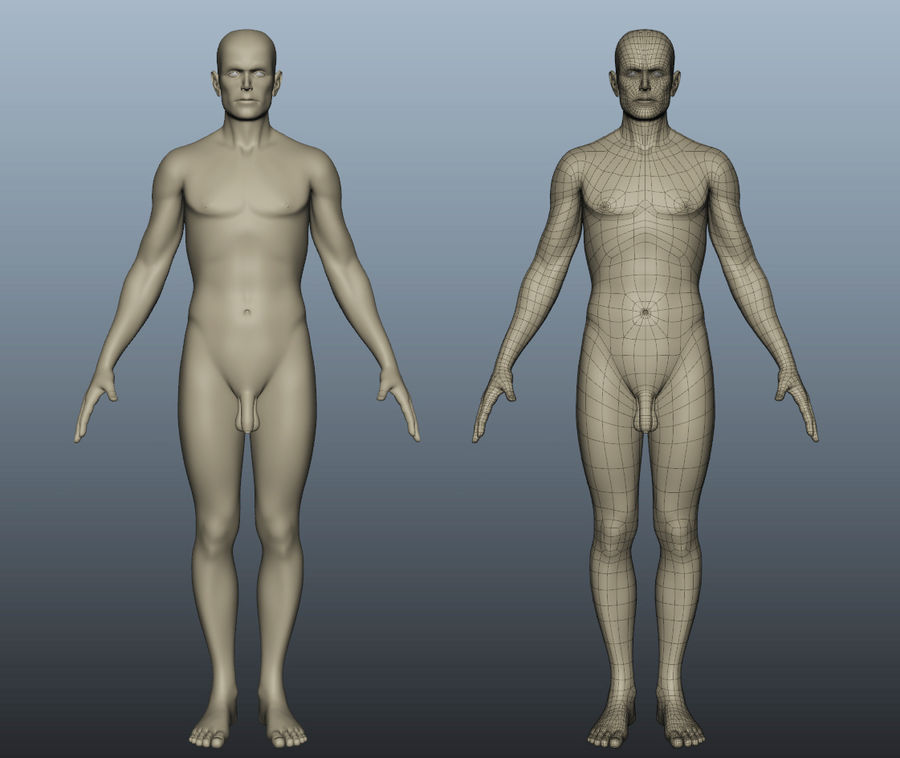 Corps nu masculin royalty-free 3d model - Preview no. 1
