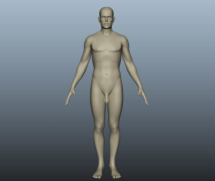 Corps nu masculin royalty-free 3d model - Preview no. 2