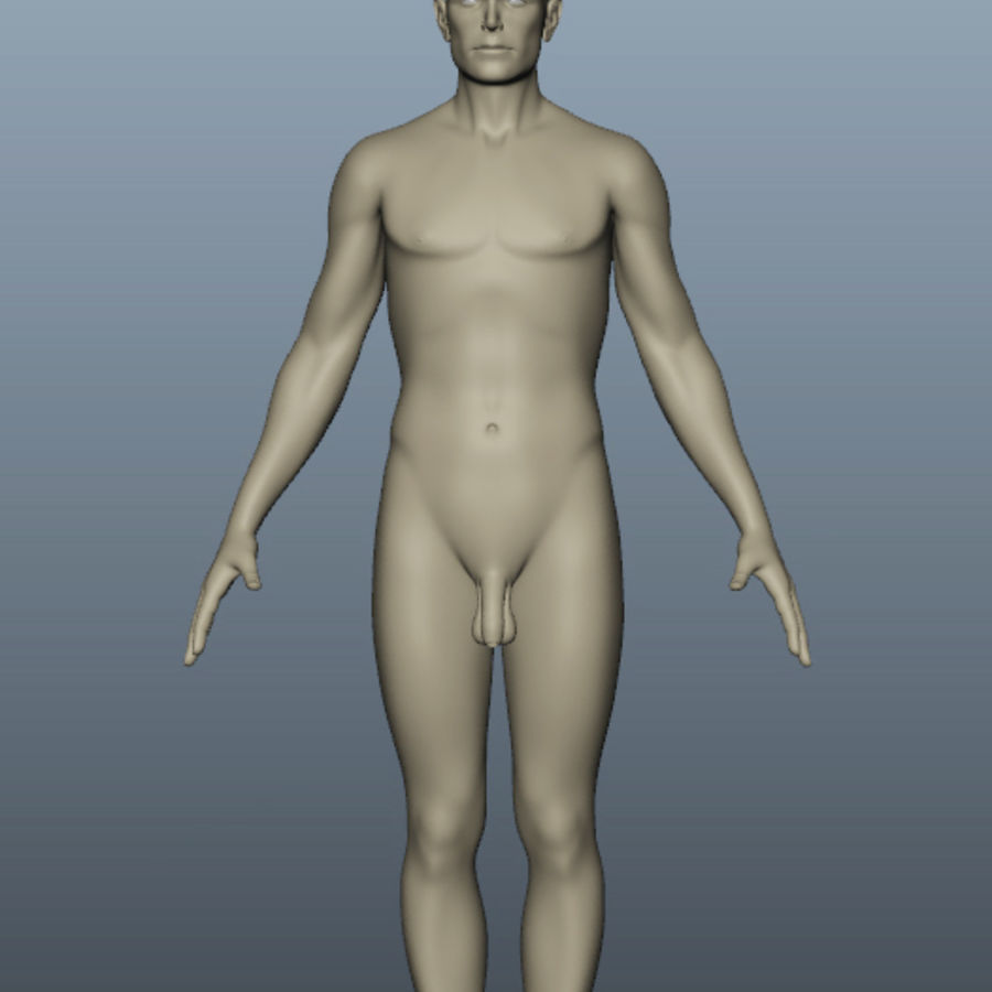Male Body Nude royalty-free 3d model - Preview no. 4